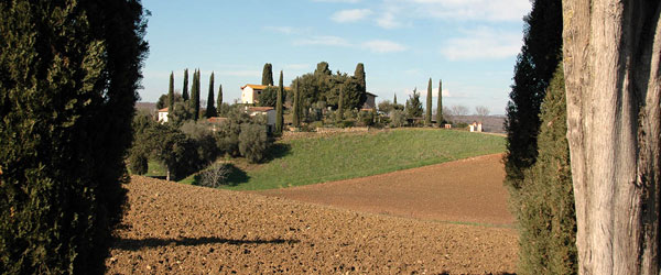 MaremmaWine-Maremma+Wine+Route+-Flavors,+Aromas+and+Charm-