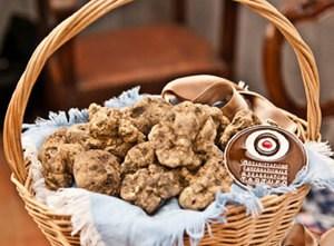 Piedmont+truffle