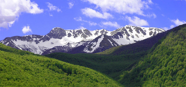 Abruzzo National Park - image from abruzzocitta.it