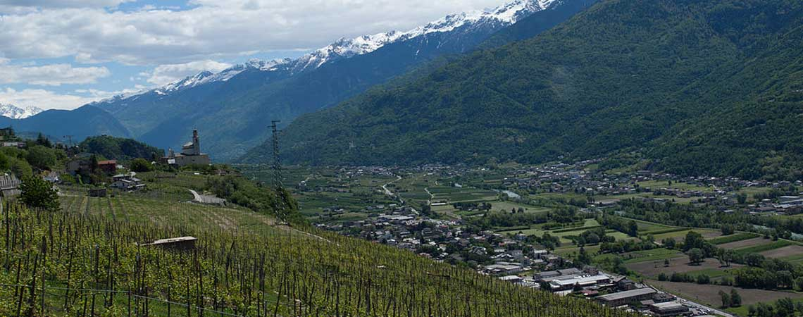 Vineyards in Lobardy's Valtellina wine region