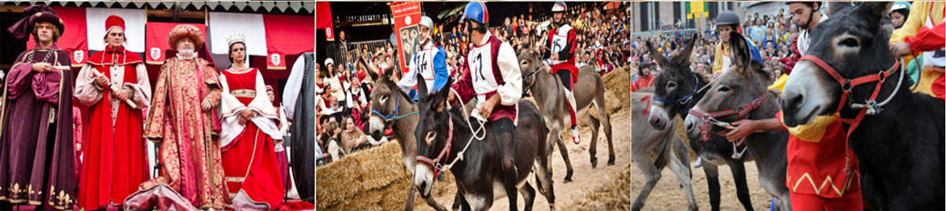 Medieval Parade and Donkey Race in Alba, Piedmont