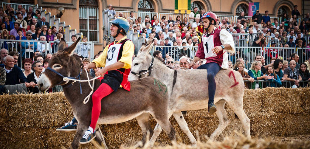 Fall Festivals in Italy: Donkey Race in Piedmont
