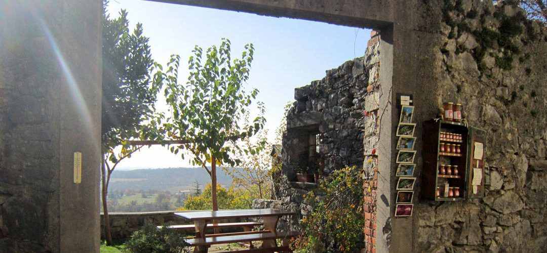 A foodie adventure in the Karst Plateau: Stanjel, Slovenia