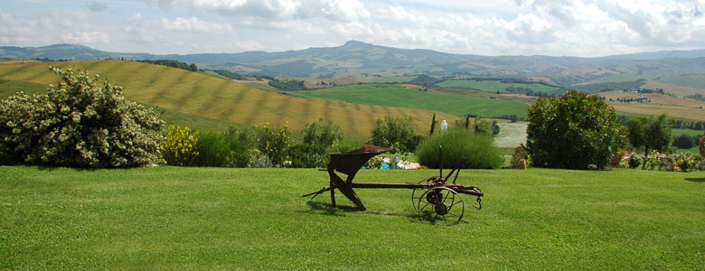 Private Tours off the beaten path in Tuscany: Colle Val d'Elsa and Val d'Orcia