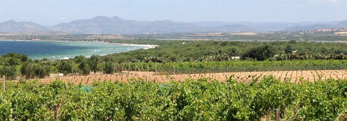 Sardinia wine region: Sulcis