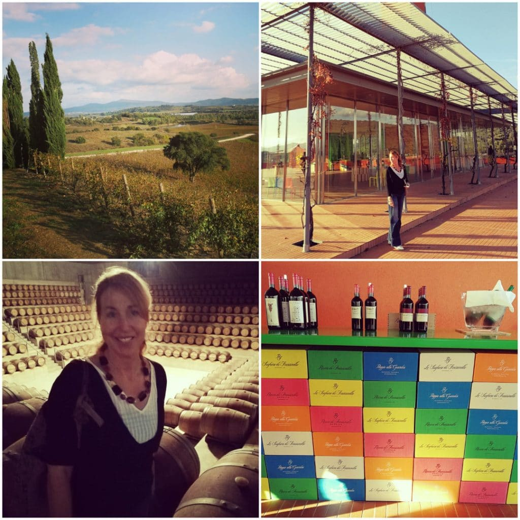 tuscany winery teambuilding vineyard corporate event