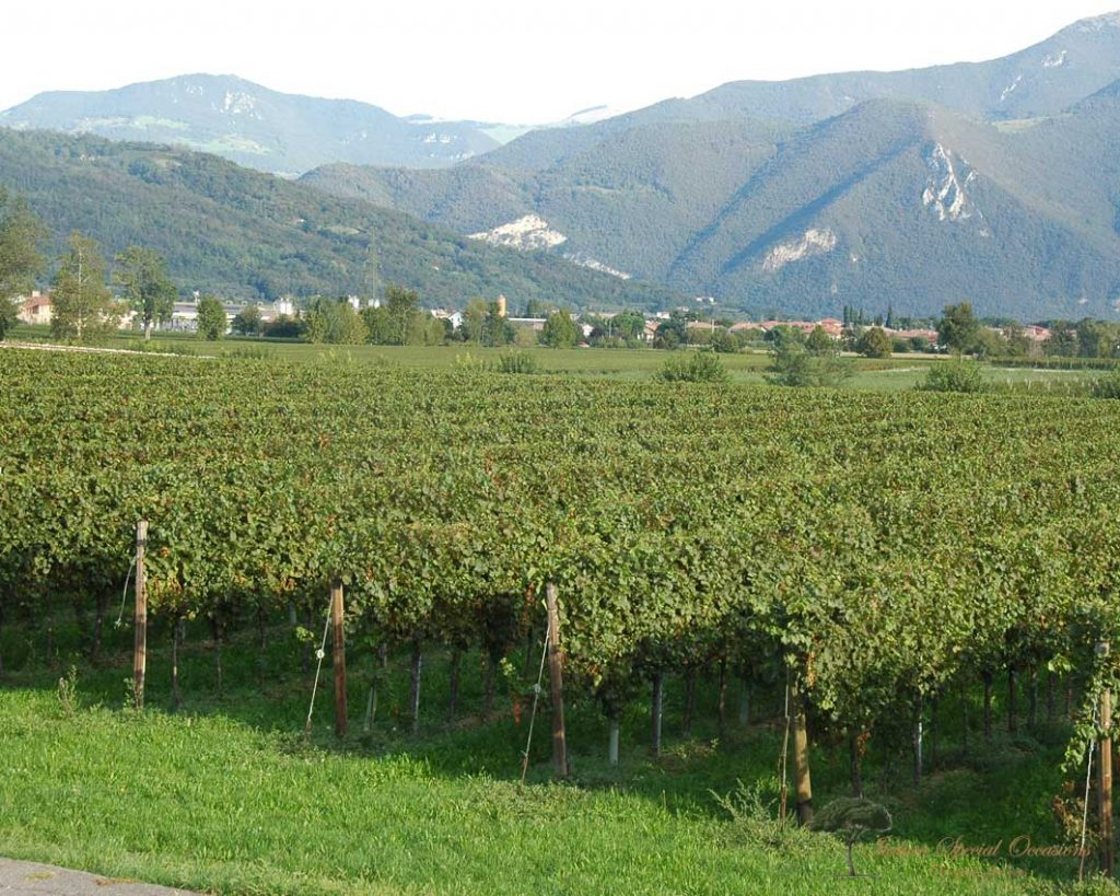 incentive lombardy italy