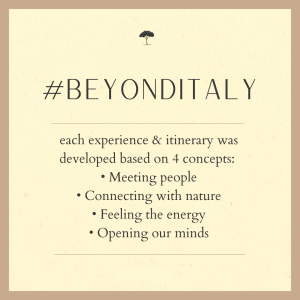Beyond Italy by Italian Special Occasions DMC (4)
