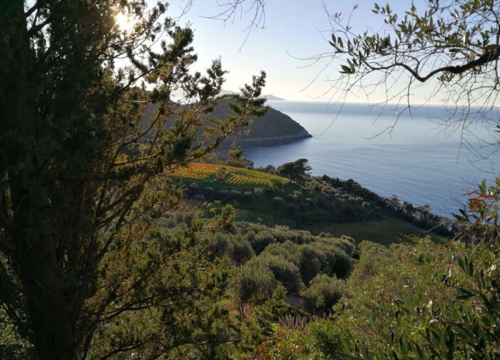 corporate retreat tuscany maremma